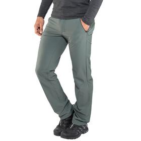 Salomon Wayfarer Pants Men Regular urban chic
